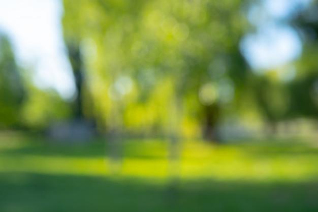 抽象的なぼかしの背景の都市公園のボケ味
