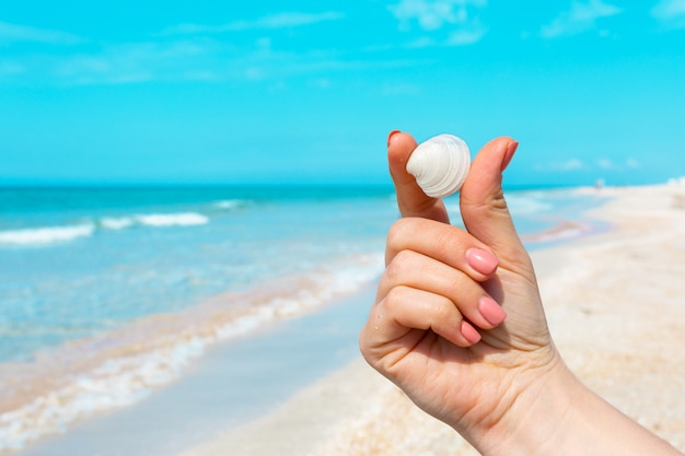 Женская рука держит раковины на пляже.