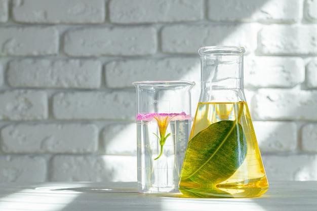 Заводы в лабораторной посуде. концепция химических исследований продуктов по уходу за кожей и лекарств