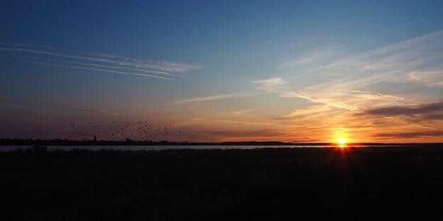 Рассвет на озере летом. солнечные лучи, силуэты летящих птиц и красивые облака.