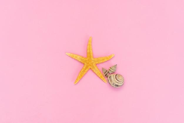 ピンクの背景に分離された海のヒトデ