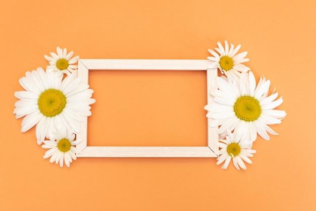 Ромашковая рамка с местом для текста, цветочная открытка с травами