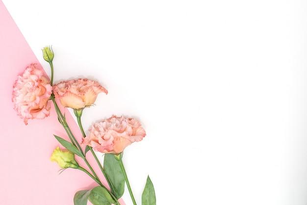 美しいスタイリッシュな女性のマニキュア。チューリップの花。ピンクの背景。