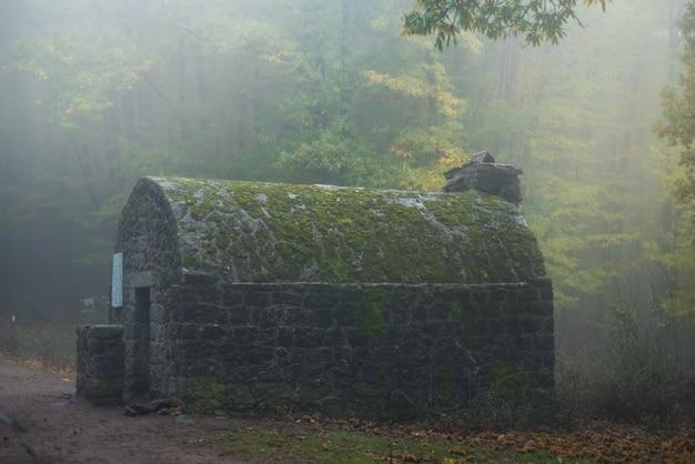霧の中の避難所