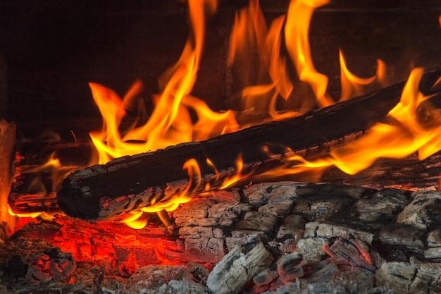 夜に燃える木。炎と火の火花
