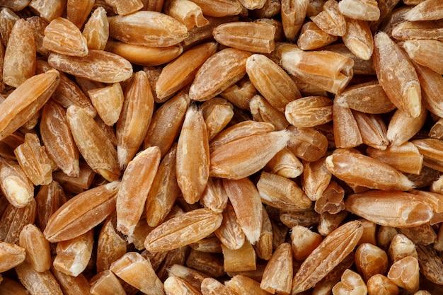 穀物種子の自然なクローズアップ