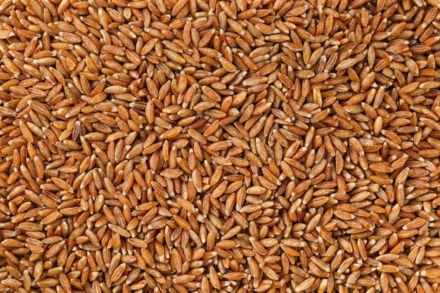 Коричневый рис жасмина крупным планом. органическая текстура зерна