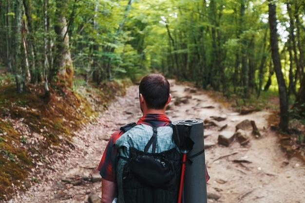 道の春の森のバックパックを持った旅行者は先を見ます。木の冠を通して日光を浴びてください。
