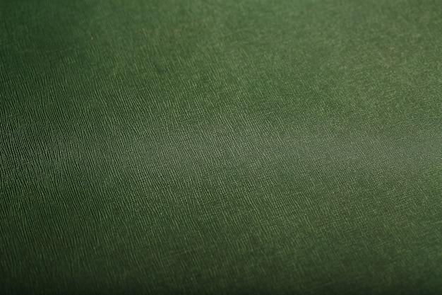 緑の肌の質感