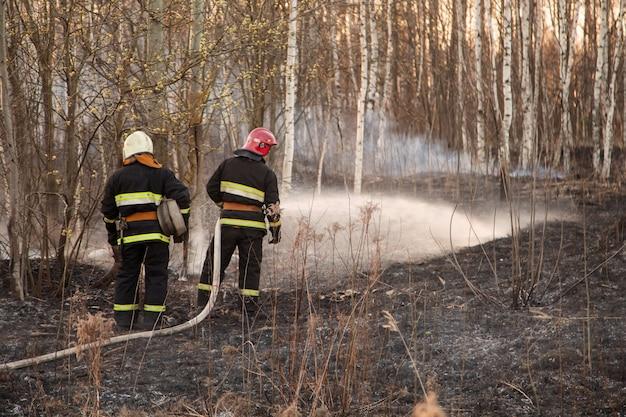 救助隊員が山火事を消火する