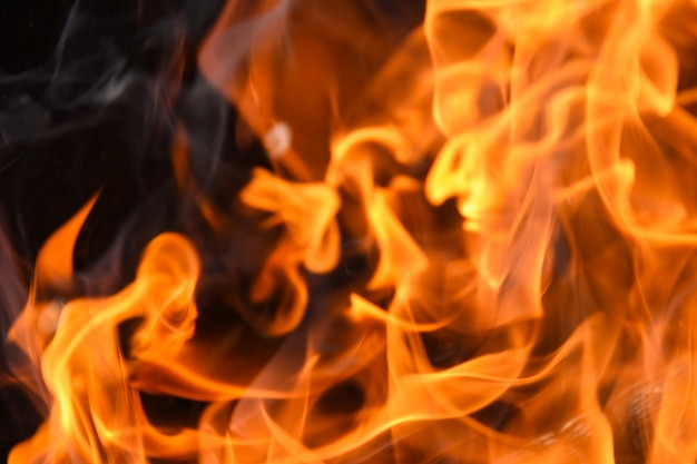 火の赤い炎が薪から燃え上がる