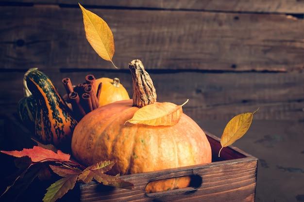 カボチャと落ち葉。秋、感謝祭やハロウィーンのコンセプト