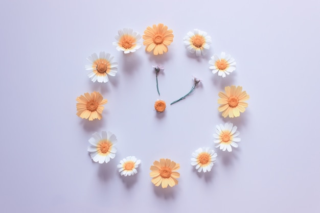 グレーに白と黄色のヒナギクで作られた花時計