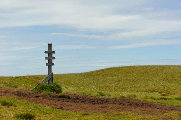 Старый деревянный знак в природе