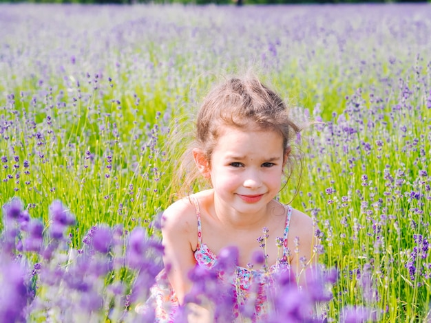 Девушка сидит в сиреневом поле