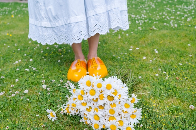 夏の庭で花束の美しいヒナギク。緑の草の鎮静。白いドレスと伝統的なオランダの木製の靴を着ている女性