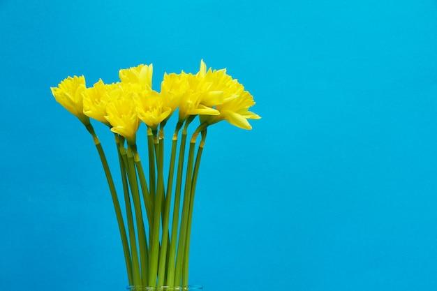青に咲く黄色い水仙の花束、