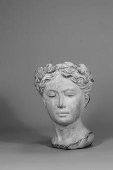 Красивые элементы дизайна. стильное украшение выполнено в виде головы греческой богини. серый фон