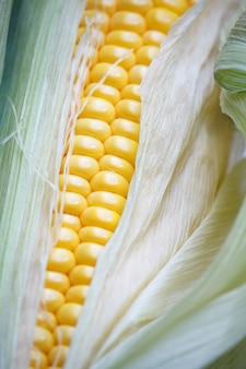 Очень крупный план осенней кукурузы на деревянном столе благодарения,