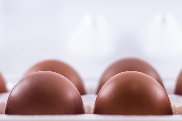 卵パッキング絶縁
