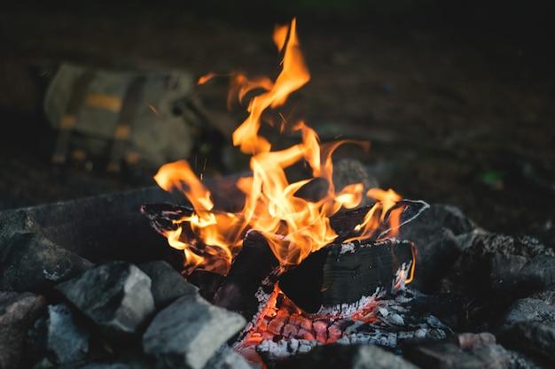 夕暮れの森のキャンプファイヤー