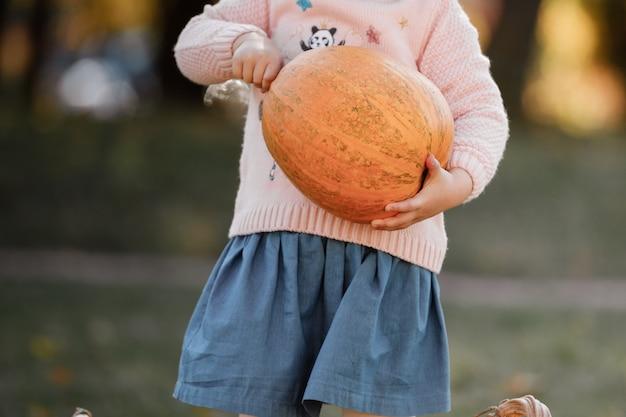 小さな女の子は、秋の日に彼女の手で大きなカボチャを保持しています。ハロウィーンパーティー。トリミングされた写真。