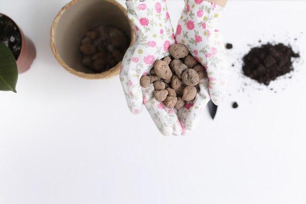 植物移植の準備プロセス。スタイリッシュな手袋の女性の手は、白い背景の観葉植物の排水を保持しています。エココンセプト。エコ趣味。セレクティブフォーカス