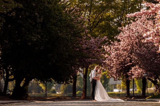 春の満開の桜公園で幸せな花婿ハグ花嫁。公園で新婚カップル。新婚。公園を散歩してハグ。楽しい新婚夫婦。素朴な結婚式。