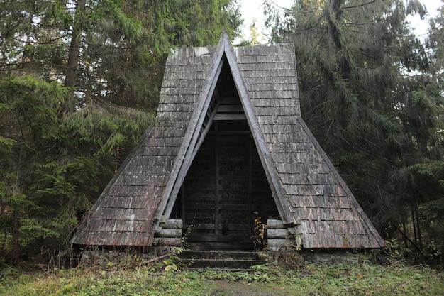 カルパティア山脈の秋の森の湖で古い木造住宅