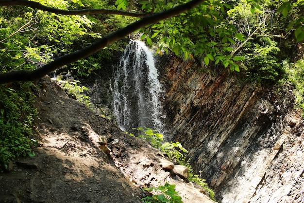 滝。公園内の山の滝