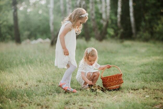 公園でアヒルと遊ぶ二人の少女。素敵なアヒルの子と夕暮れ時の二人の女の子