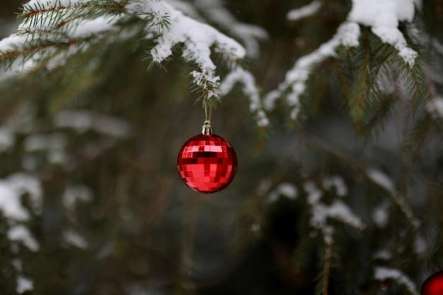 クリスマスツリーに掛かっている花輪でクリスマスボール。
