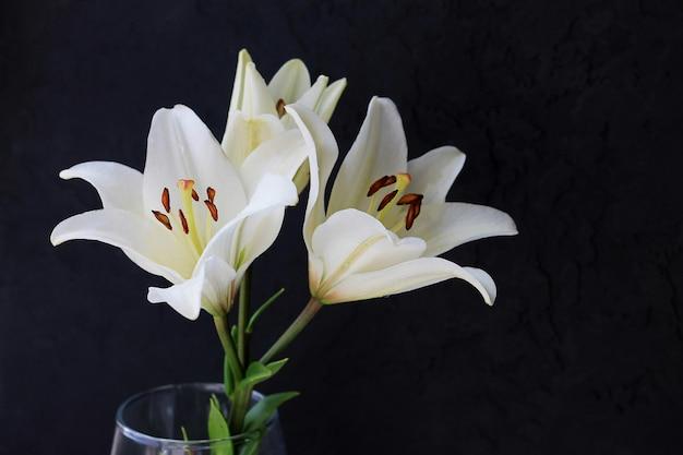 黒い背景に白いユリの花の花束。