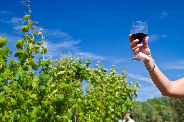 赤ワインのグラスにつる