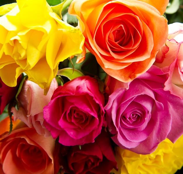 カラフルなバラの花束