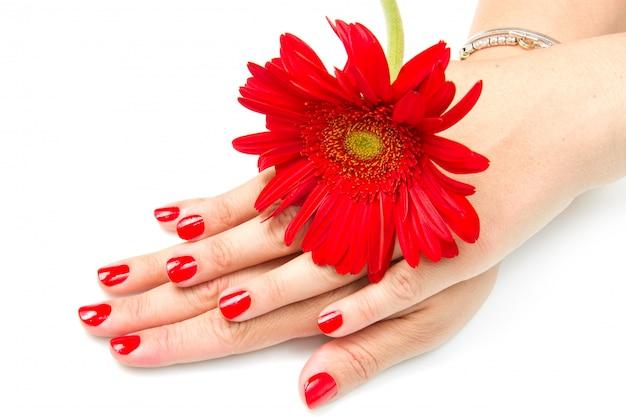 赤いマニキュアと赤い花を持つ女性の手