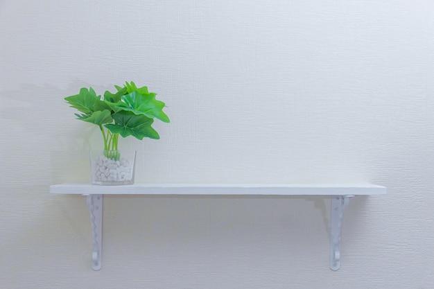 コピースペースを持つ白い壁に木製の棚にかわいいポットの観葉植物。シンプルなスタイルの装飾デザイン。