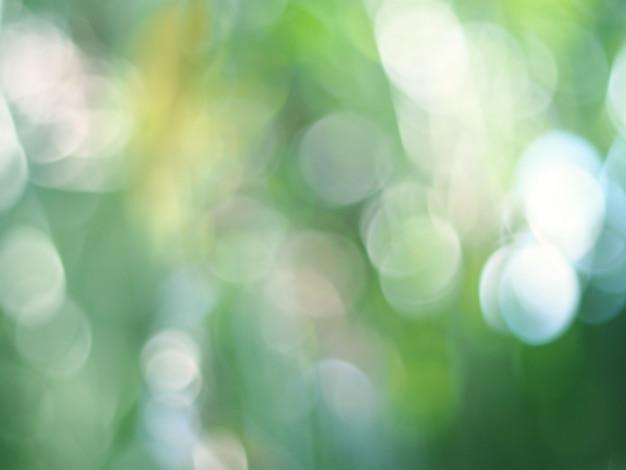 緑色の光ボケ、自然の背景。抽象的な背景をぼかした写真。自然なボケ味。