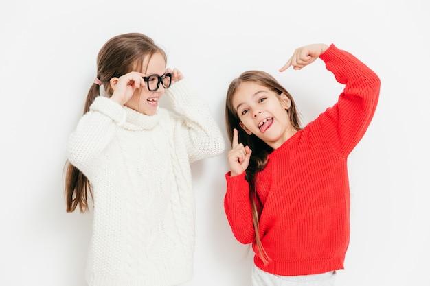 陽気な二人の姉妹は一緒に楽しんで、面白い表現をします