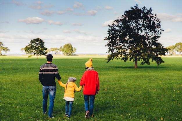 幸せな家族が手をつないで、緑の牧草地やフィールドの上を歩く