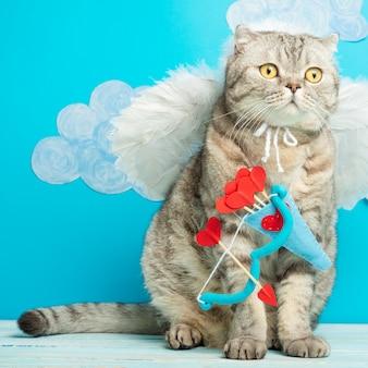 バレンタインデー、イギリスの灰色の猫キューピッド、天使、かわいいペット