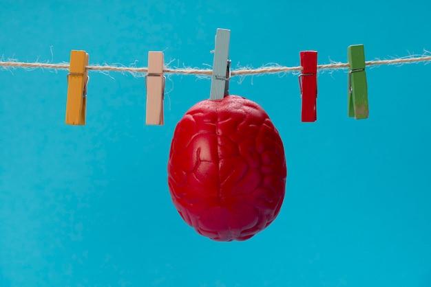 赤い色の脳は洗濯物の上、洗濯はさみの上で乾燥されます。