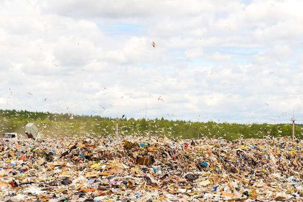 埋め立て地のゴミ捨て場。環境汚染。