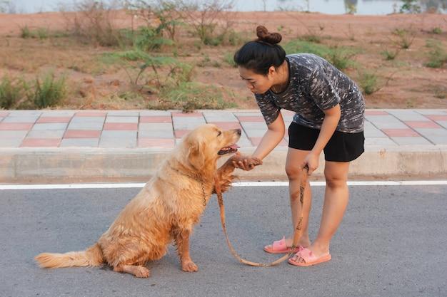 公道を歩いて彼女のゴールデン・リトリーバー犬を持つ女性。