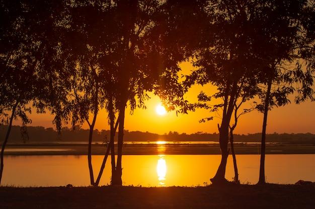 Лучи заката проникают сквозь деревья на озере