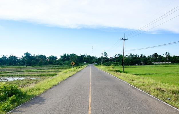 道は緑の田んぼを渡す