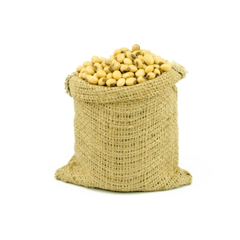 大豆は、白い背景で隔離。