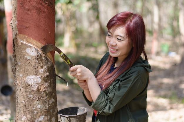 ゴム製木を切る女性ゴム農家がラテックス、タイを維持します。