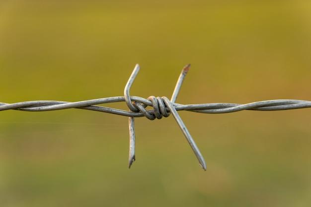 コピースペースでぼかし自然と有刺鉄線