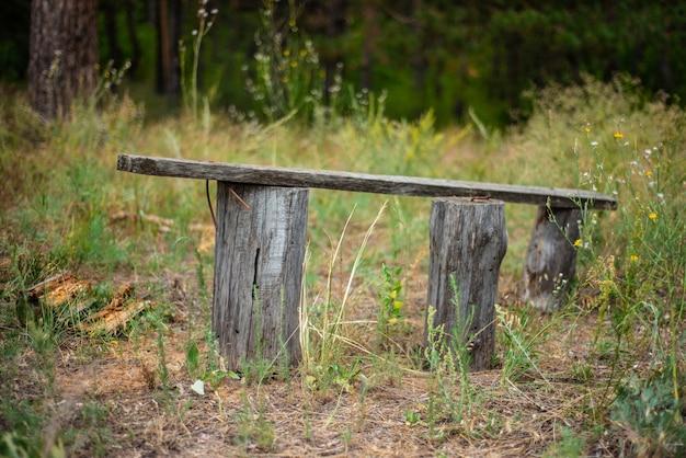 Старая деревянная скамья в заброшенной зеленой зоне